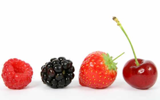 white, клубника, ягоды