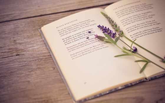 книги, книга, автора, книге, lavender, правильный, стих, узнай, назовите, книг, свой,