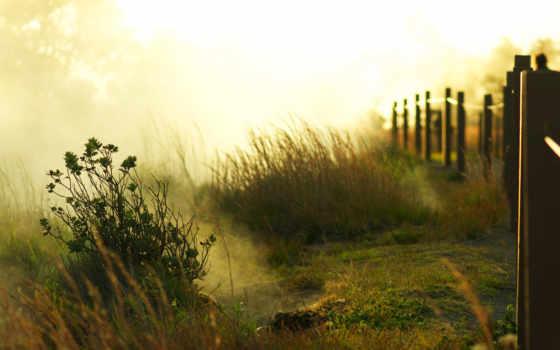 туман, рассвет, sun, утро, трава, trees, забор, свет, горы, кустики, лес,