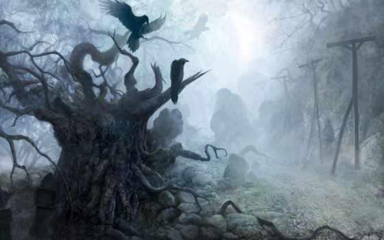 сухие, деревья, дерево, вороны,