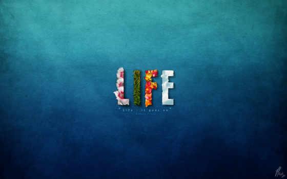 минимализм, цветы, страница, life, pic,