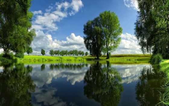 пруд, добавить, лугов, зелёных, clean, among, favourites, loading, summer,