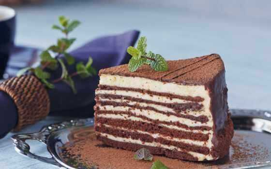 chocolate, вектор, торт, layer, мята