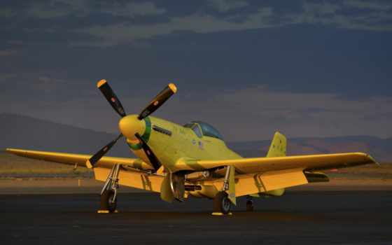 mustang, warbird, истребитель, самолёт, yeller, yellow, wwii, ole, самолеты,