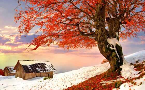 landscape, winter, снег