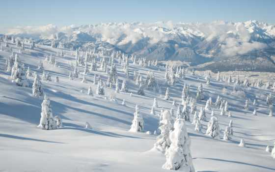 winter, снег, природа, широкоформатные, пикселей, хостинг, елки, пейзажи -, зимние,