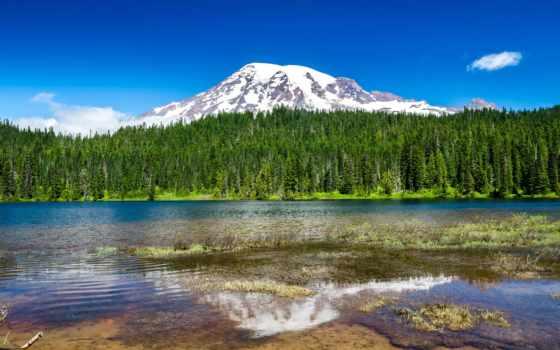 park, mount, rainier, природа, рейнир, national, лес, горы, glacier,