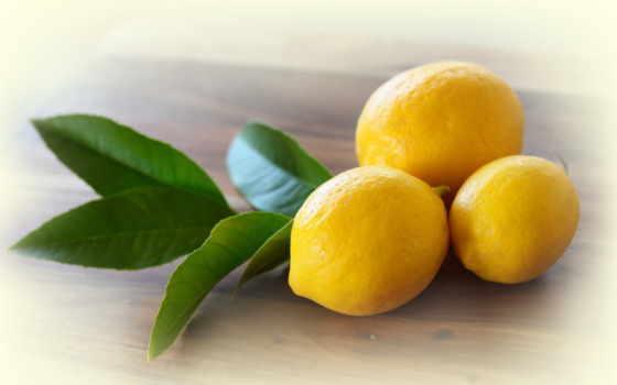 лимоны, lemon, лимона, цитрус, телефон, три, еда,