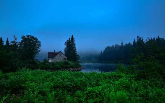 house, fore, лес, map, дерево, зелёный, день, туман, река, greenery