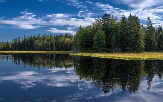 отражение, природа, have, спокойствие, качественные, ipad, pro