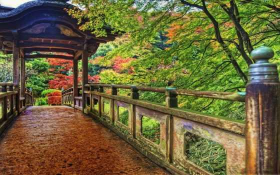 yokohama, park, япония, colorful, растительность, мост, wooden,