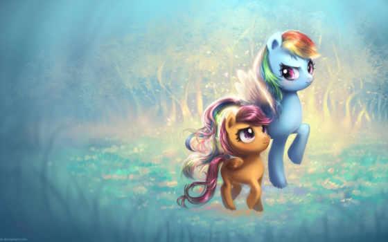 ponyville, крыло, радуга, ponies, пони, little,