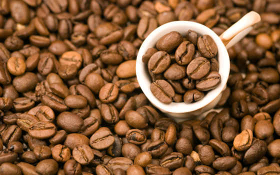 coffee, зерна, зерно, кофейные,