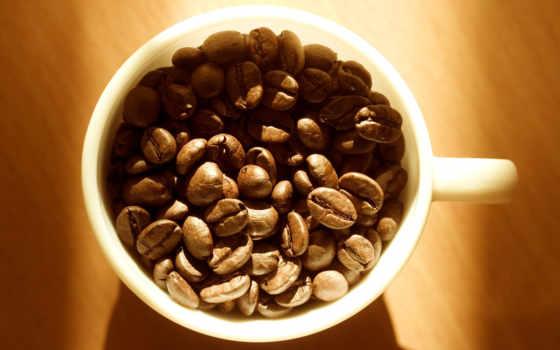 coffee, cup, чая