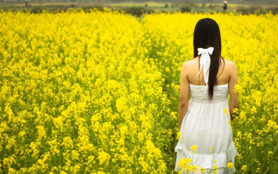девушка, поле, цветов