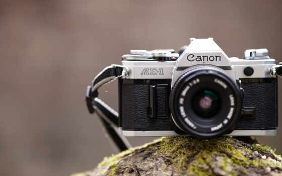 kamera, hintergrundbild, фотоаппарат, canon, отлично, garten, блики, permission, facebook, весна
