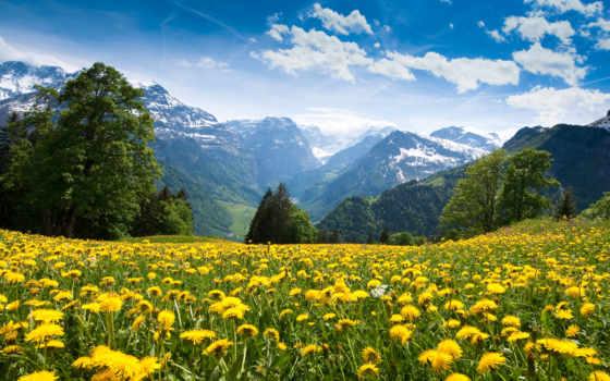 les, альпы, горы