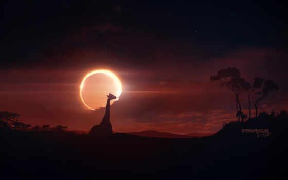eclipse, солнечный, images