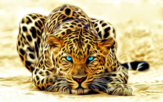 леопард, свет, голубые, окрас, лежит, голубыми, глазами, леопарда,