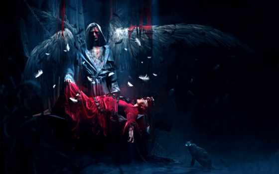art, angel, крылья, перья, девушка, profile, категории, фоны, angels,
