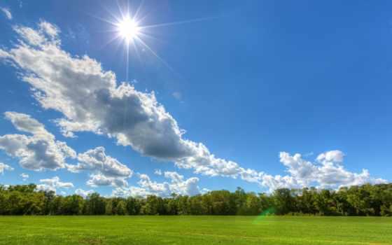 природа, summer, картинка, landscape, her, скачивания, установить, доступна,