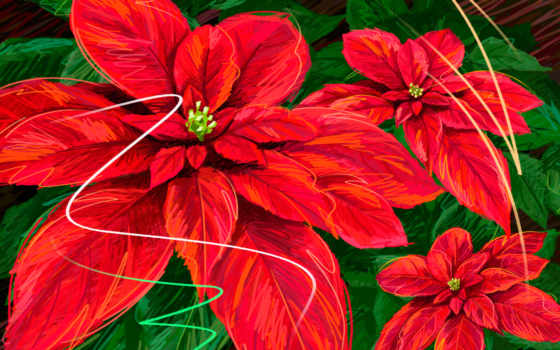 cvety, red, широкоформатные, листва, зелёный, уже, coffee, чашку, oboi,