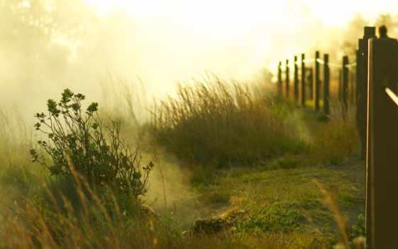 рассвет, sun, туман