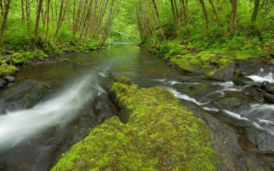 oregon, река, rivers, nestucca, природа, stock, usa, девушка, pinterest,