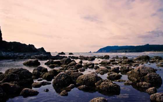 морском, берегу, камни