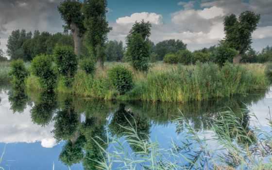 озеро, trees, трава, пейзажи, января, натуральная,