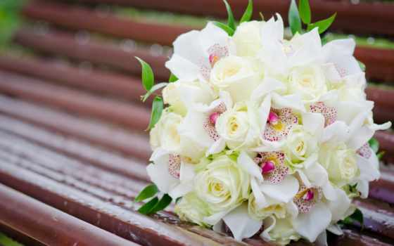 розы, цветы, букет, белые, орхидеи,