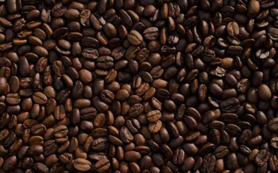 coffee, bean, apotheo, home, время, магазин, store, logo, neobhodimost, kenya