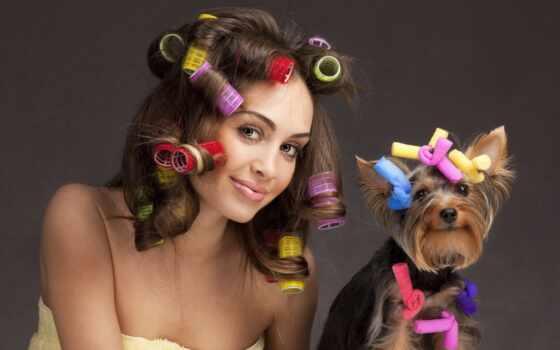 макияж, волос, собака, бигуди, глаз, ukladka, девушка, pizhamnyi, vecherinka, drug, stankevich