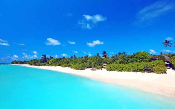 пляж, песок, море, пальмы, maldives, palm, tropics, summer, ocean, небо, бунгало,
