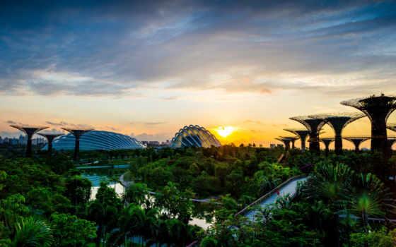 gardens, bay, singapore, trees, park, desktop,