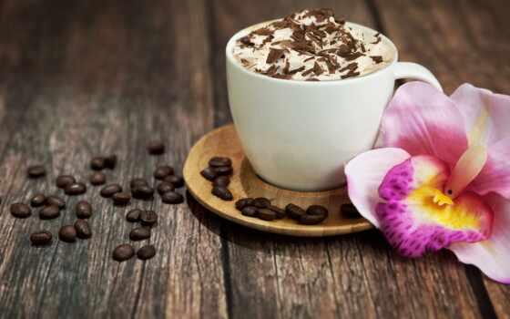 coffee, chocolate, орхидея, цветы, картинка, запах, дар, красивый, high, краска