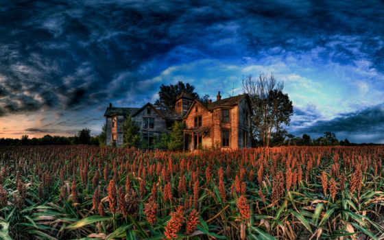 house, farm
