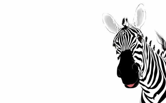 зебра, абстракция