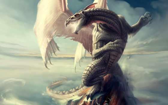 регистрации, дракон, без