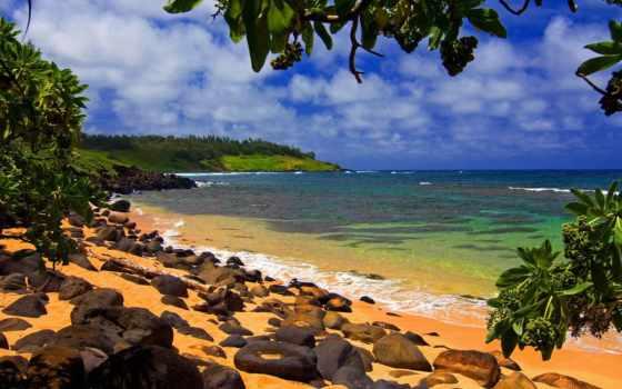 пляж, summer, sun, море, tropical, взгляд, пляжи, страница, hawaii,