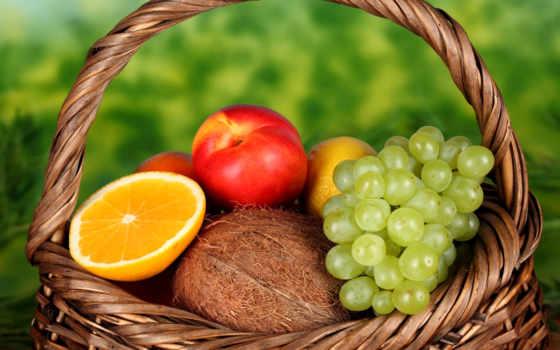 фрукты, персик, высоком, lemon, оранжевый, зооклубе, summer, базе, фруктов, качестве,