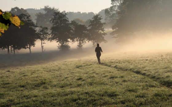 running, утро, desktop,