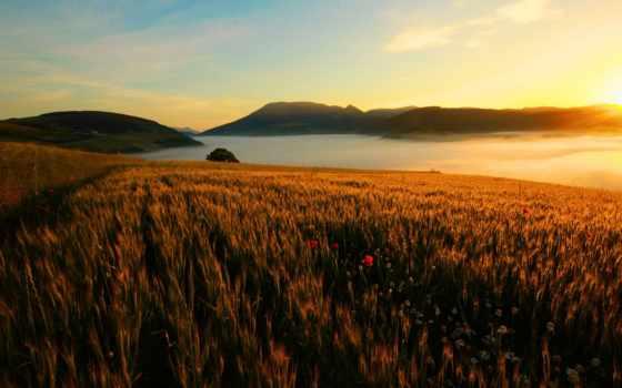 гора, поле, cvety, небо, landscape, rising, река