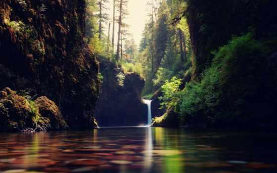 природа, water, лес, высоком, ручей, водопадик,