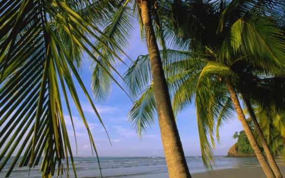 rica, costa, самара, пляж, rika,