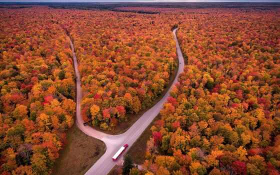 осень, лес, дорогой, взгляд, первую, дерево, облако, сша, горизонт, car, природа