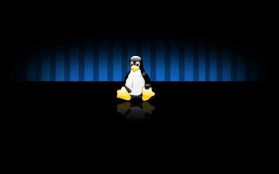linux, ecran, fonds