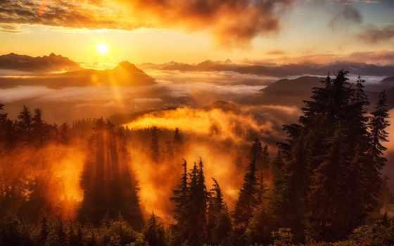 nebel, den, sonnenaufgang, berge, bäume, wolken, plochu, himmel, strahlen, obrázky,
