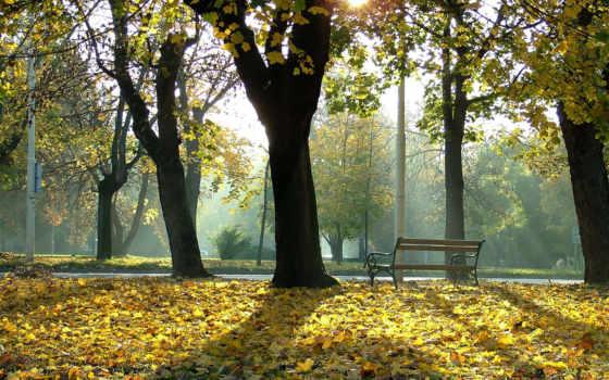 осень, размере