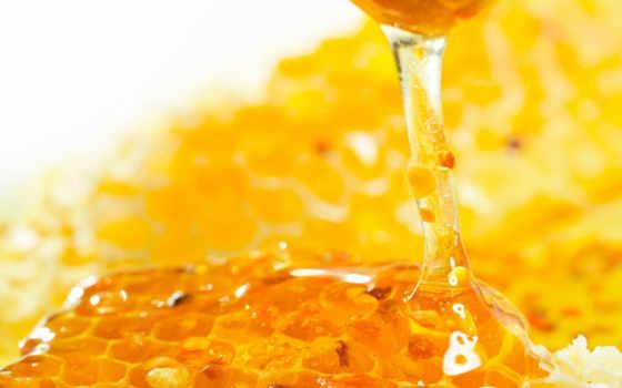 мед, соты